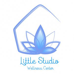 Logo Little Studio Louisiane